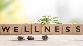 Wellness Oils Overview